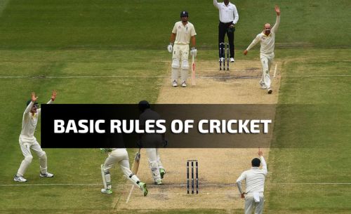 The Basic Rules of Cricket. Learn How To Play Cricket